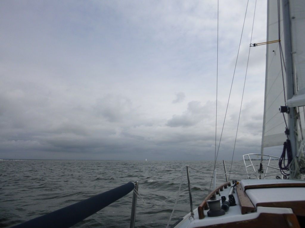 White Sails on Gray Skies