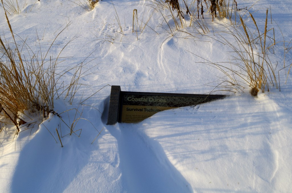 Other Buried Sign