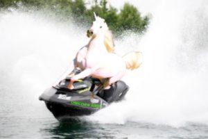 2015_05_09_unicorn