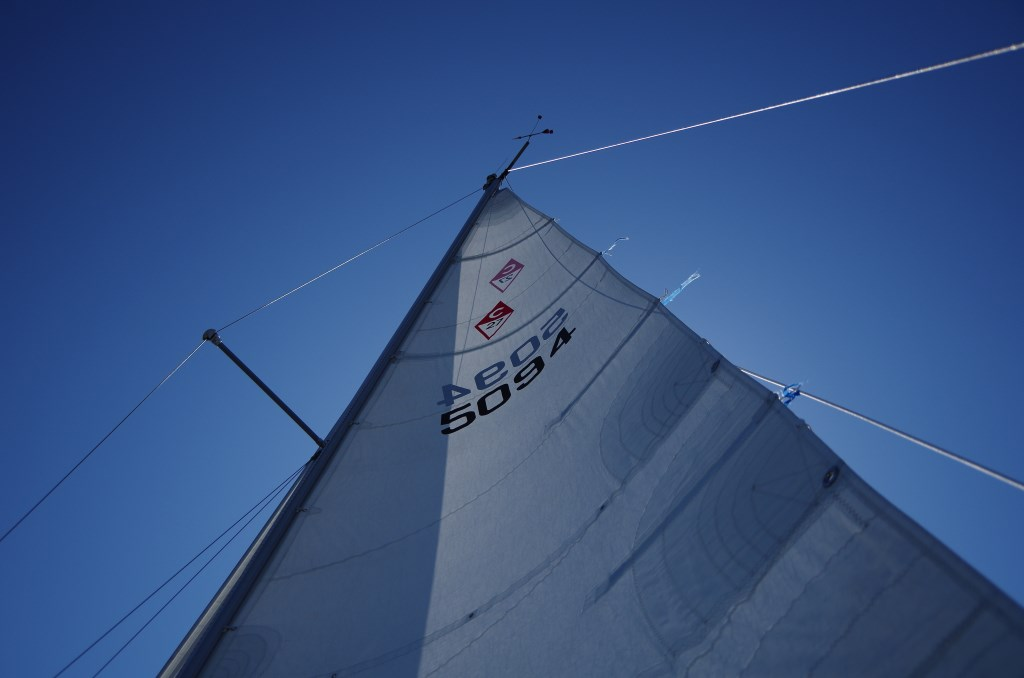 Sail Numbers Flying