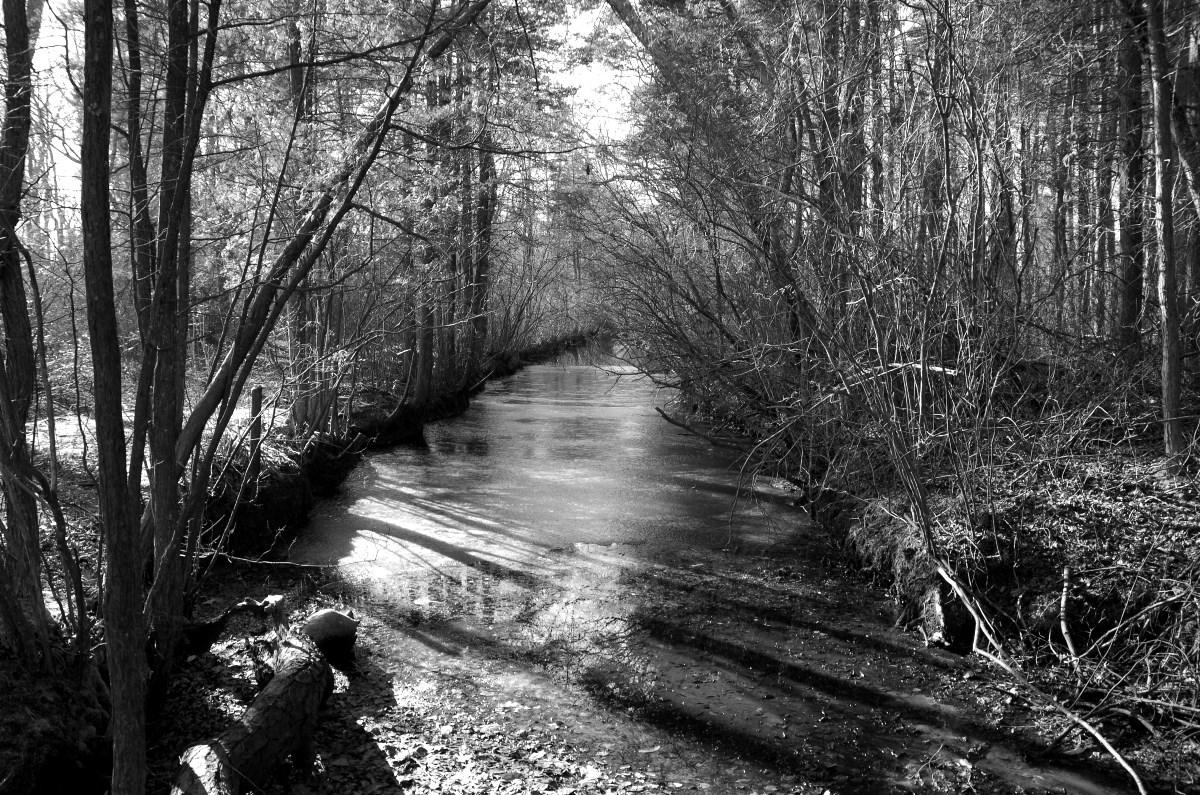 2017_12_27_04_creek