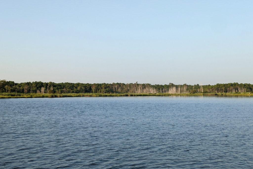 Morning at Cattus Island